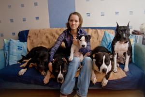 Scouthound Maximum, Scouthound Joker, Ex Animo Arte Cercea, Agavita Tequila, Florianna Scouthound s Almaznogo Ostrova